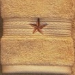 Barn Star Embroidered 2 pc. Wash Cloth Set