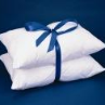 "American Maid Standard Pillows, 2 pack/20"" x 26"" - 20 oz. fill"