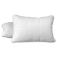 "Cozy Touch Queen Pillows, 20"" x 30"""