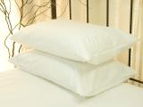 Allergen Queen Pillow Covers, 20x30/pr.