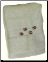 Majestic Deer Embroidered Wash Cloth