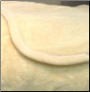 "RI Solid Queen Bed Blankets - 90"" x 90"" - Ivory"