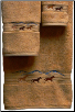 Wild Horses Towel Set - Gold